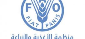 الفاو: تخصص ربع مليون دولار للتصدي للأمراض الحيوانية في ليبيا