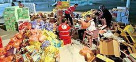 جنزور توزيع 60 سلة غذائية
